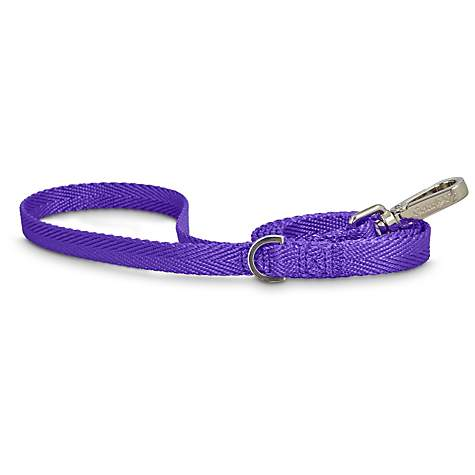 Good2Go Purple Nylon Dog Leash, 1