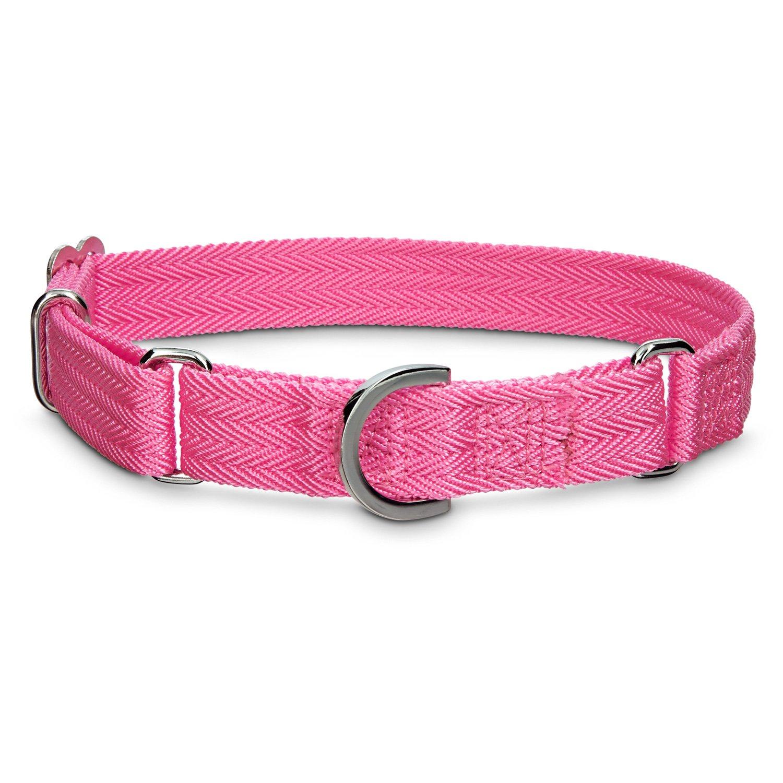 Martingale Dog Collar Petco