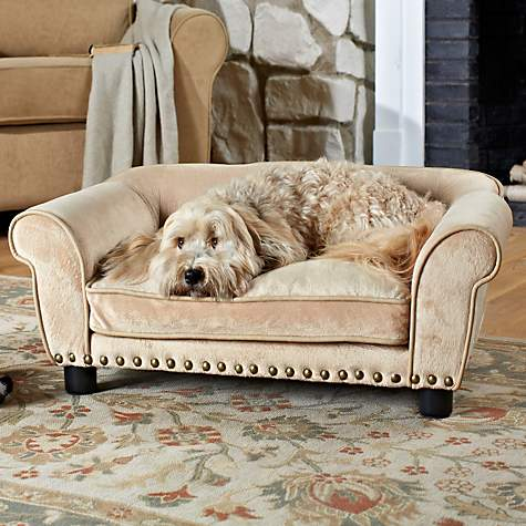 Wonderful Enchanted Home Pet Dreamcatcher Sofa Dog Bed In Cream | Petco