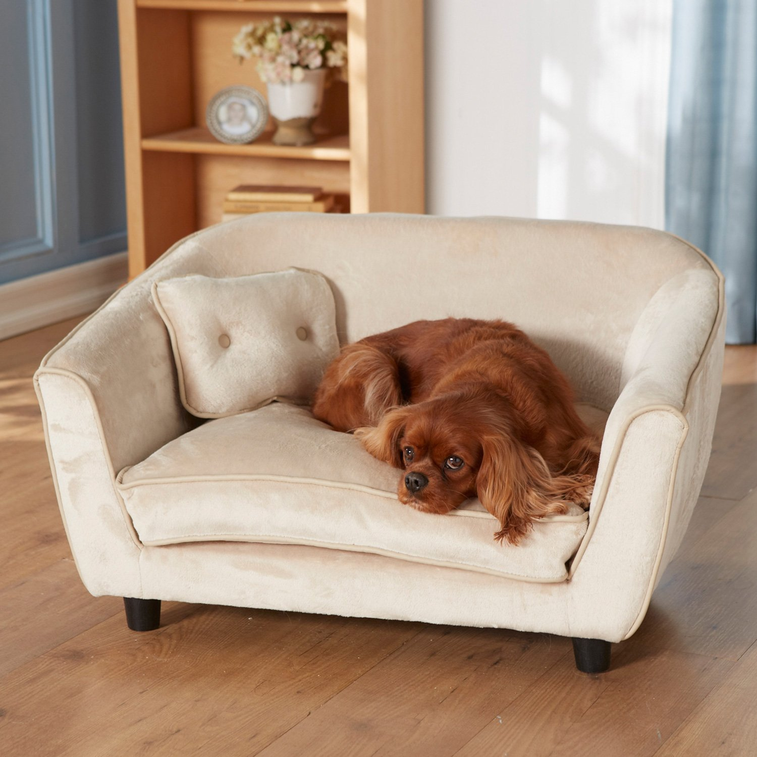 Enchanted Home Pet Ultra Plush Astro Sofa Dog Bed | Petco