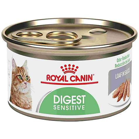 Royal Canin Feline Health Nutrition Digest Sensitive Loaf In Sauce Wet Cat Food