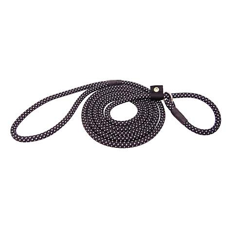 Hamilton Black Nylon Dog Lead