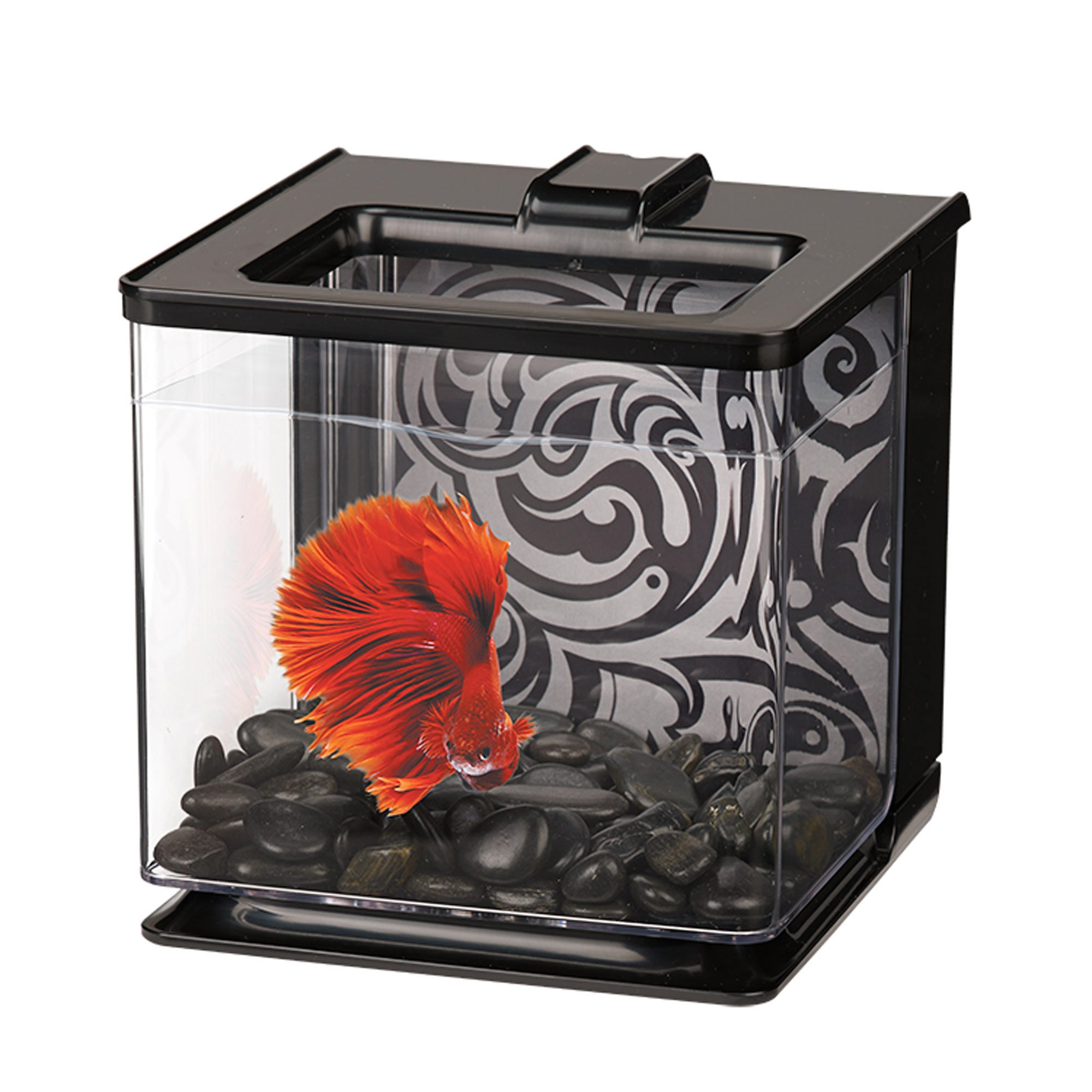 Marina betta ez care black aquarium kit petco for Betta fish tanks petco