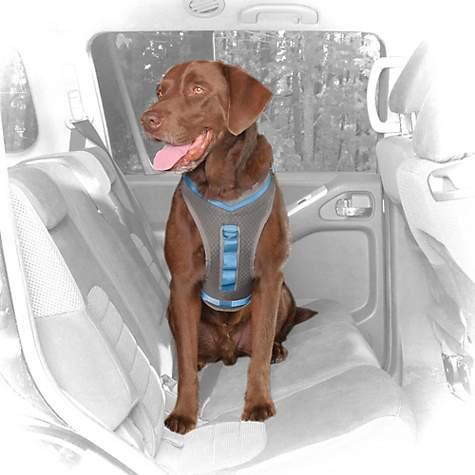 2407998 center 1?$ProductDetail large$ kurgo gray & blue journey dog harness petco