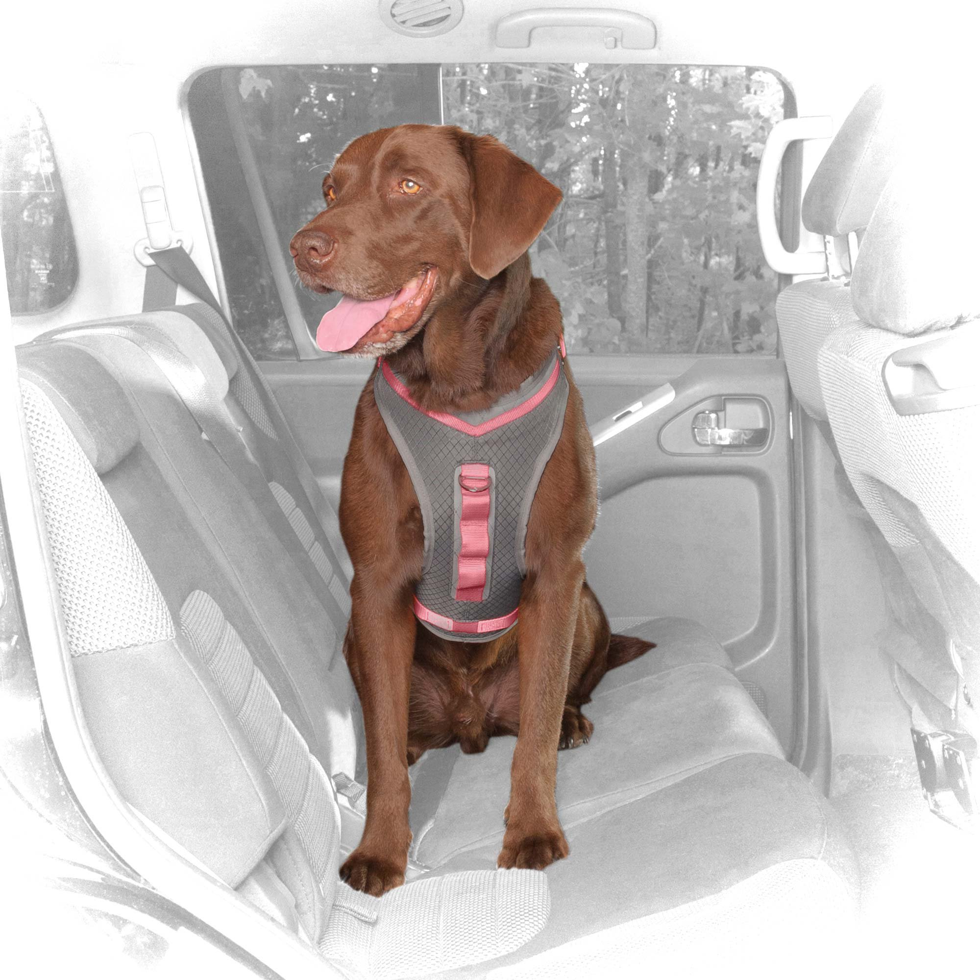 Kurgo Gray & Pink Journey Dog Harness | Petco