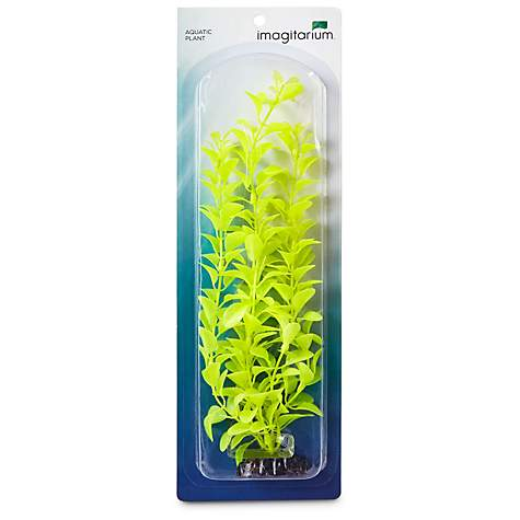 Imagitarium Light Green Background Aquarium Plant