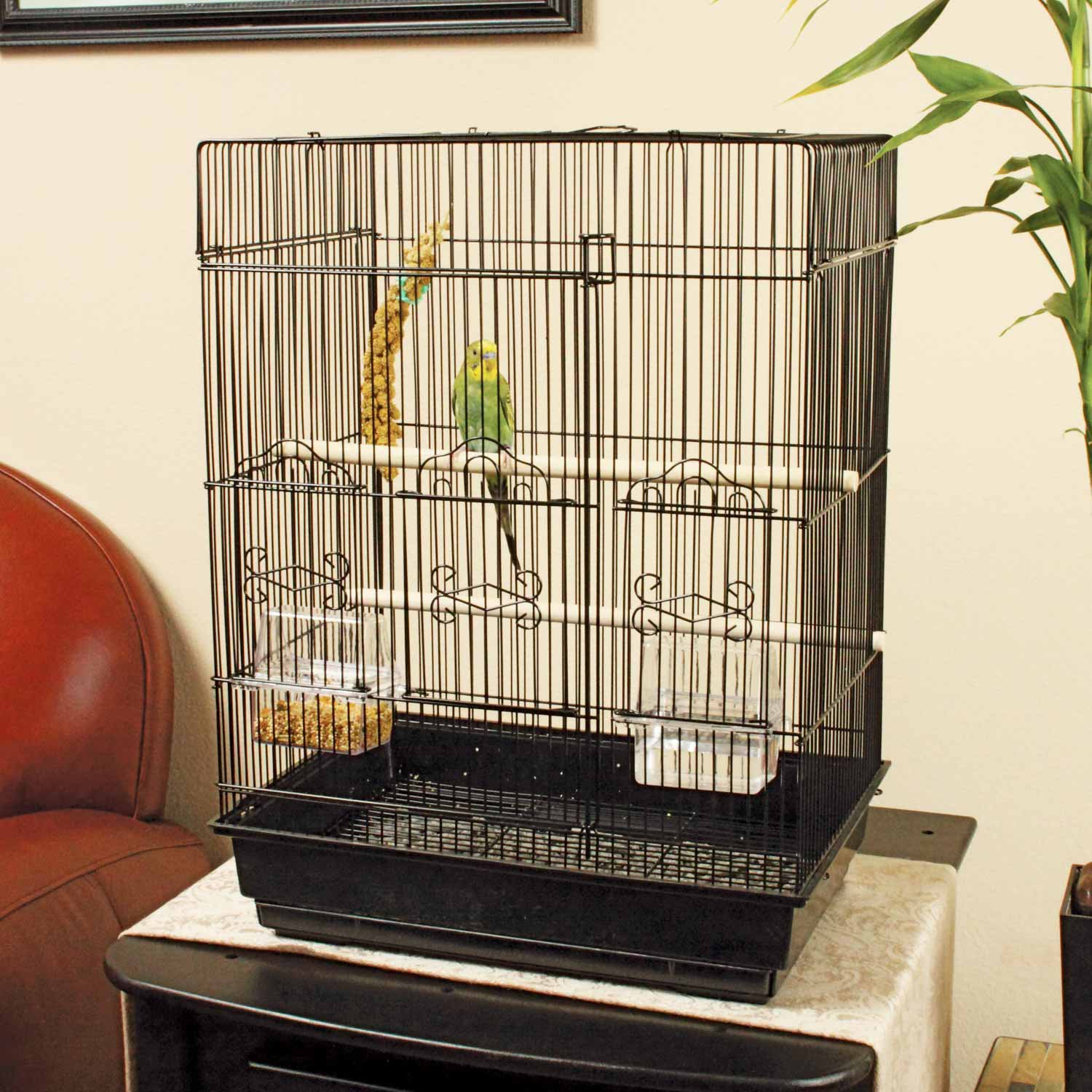 You Amp Me Square Top Parakeet Cage Petco