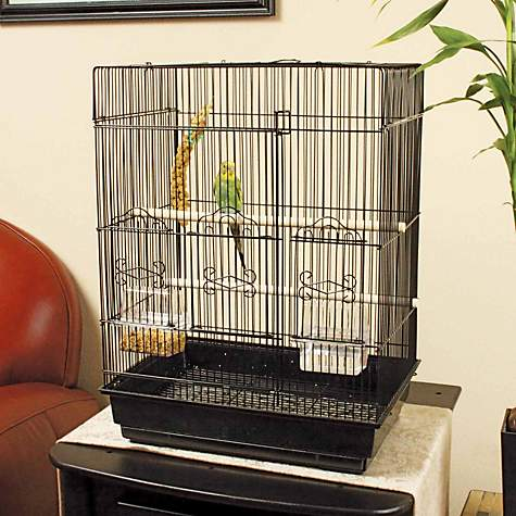 How much do parakeets cost at petco