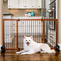 carlson pet gate large - Doggie Gates