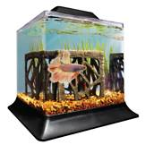 Fish bowls desktop aquariums fish tanks petco for Betta fish tanks petco