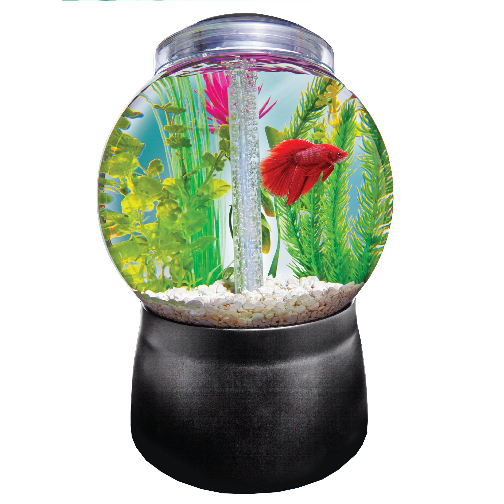 Imagitarium gumball freshwater aquarium petco for Betta fish tanks petco