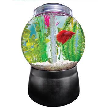 Imagitarium gumball freshwater aquarium petco for Petco fish bowl