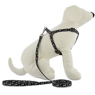 Bond & Co. Black Harness Lead Set