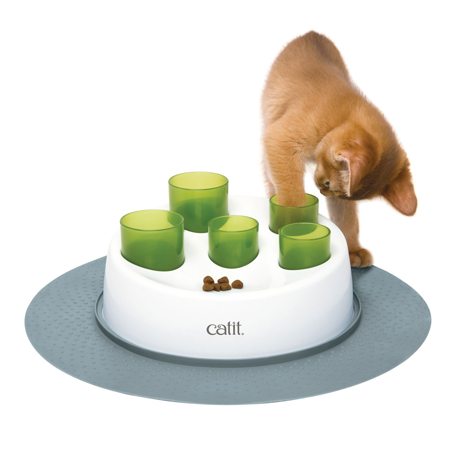 Fish For Cats Pet Food