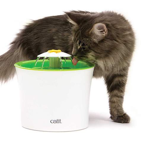 Catit Flower Cat Water Fountain | Petco