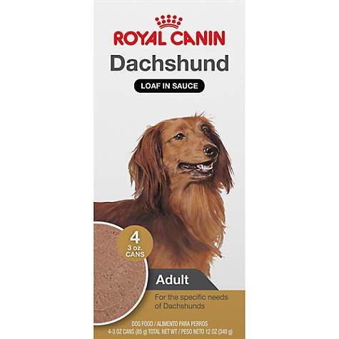 Royal Canin Breed Health Nutrition Dachshund Loaf In Sauce Dog Food Multipack