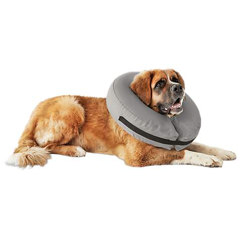 Well Good Inflatable Collar For Dogs And Cats Medium