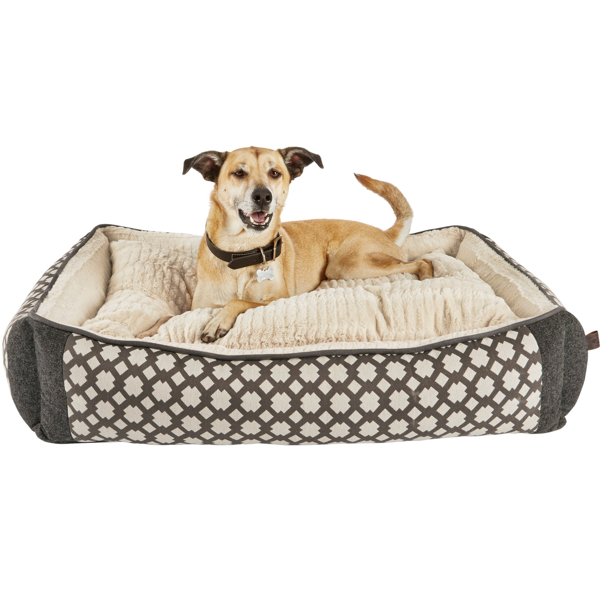 fronted large premium inspirational beds oval l drop of pampl dog heavy bed duty material uk for p dogs