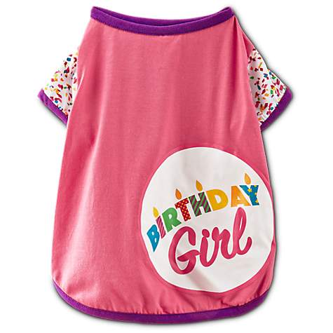 You Me Birthday Girl T Shirt For Dogs X Small