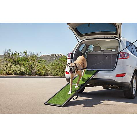 Good2Go Portable Pet Ramp, 6