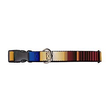 Buckledown Zarape Dog Collar
