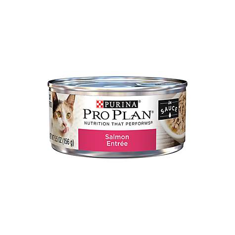 Purina Pro Plan Salmon Entree in Sauce Cat Food
