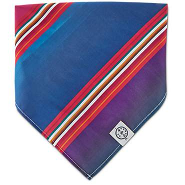Bond & Co. Serape Dog Bandana