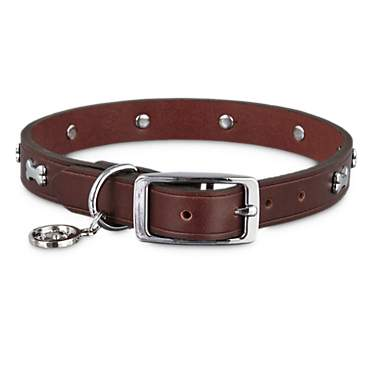 Bond & Co. Brown Leather Bone Stud Collar