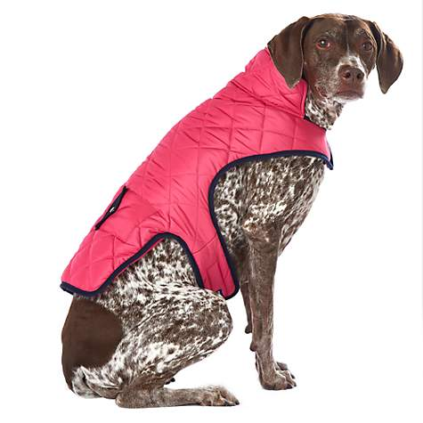 Pup Crew Hot Pink with Navy Trim Quilted Jacket