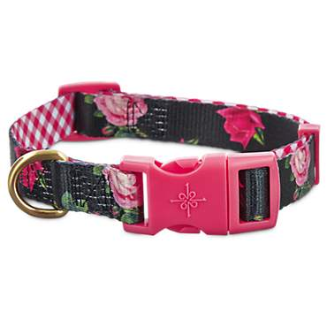 Good2Go Pink Rose Print Dog Collar in Black