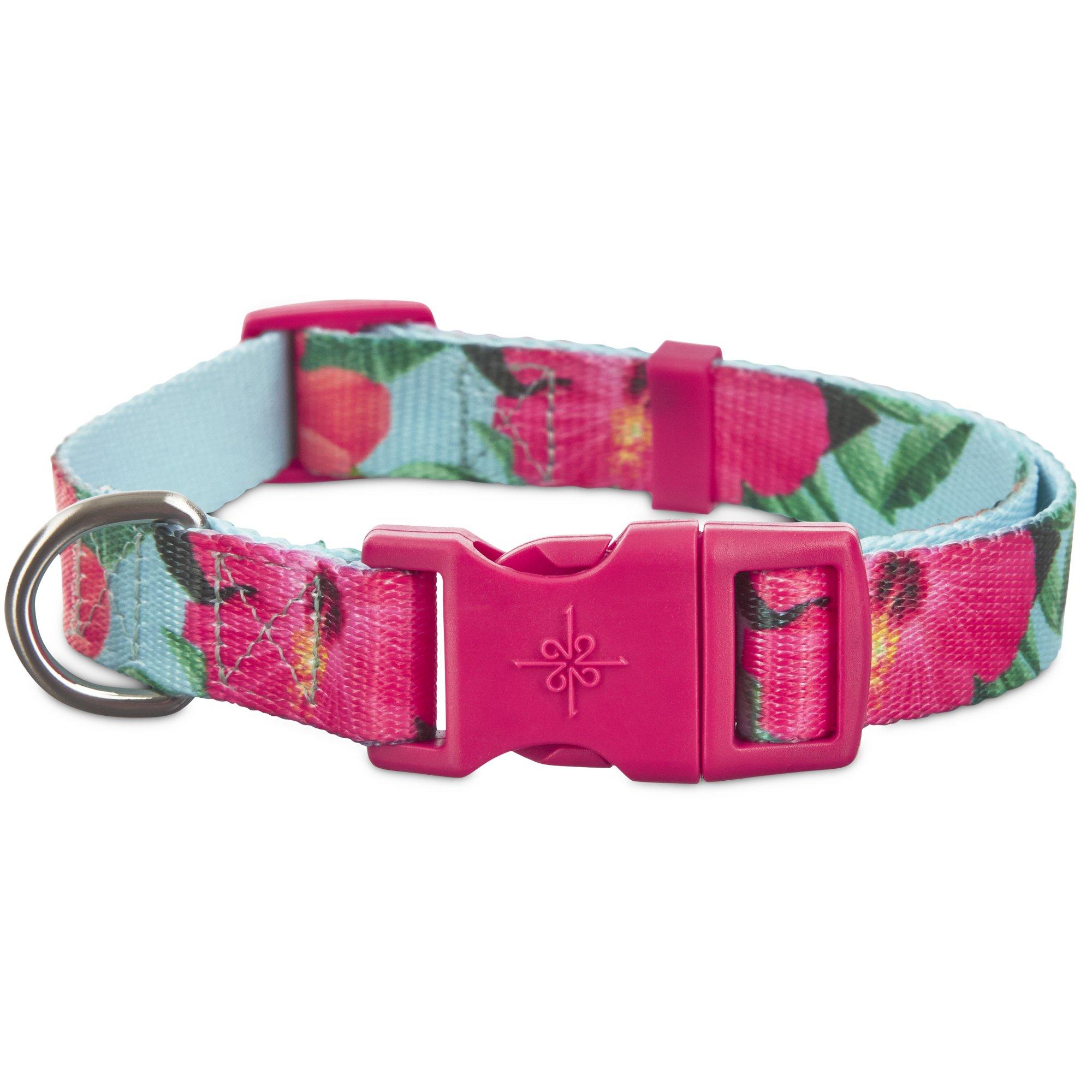 Good2Go Hibiscus Dog Collar | Petco at Petco in Braselton, GA | Tuggl