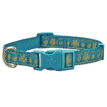Good2Go Teal and Gold Paisley Dog Collar