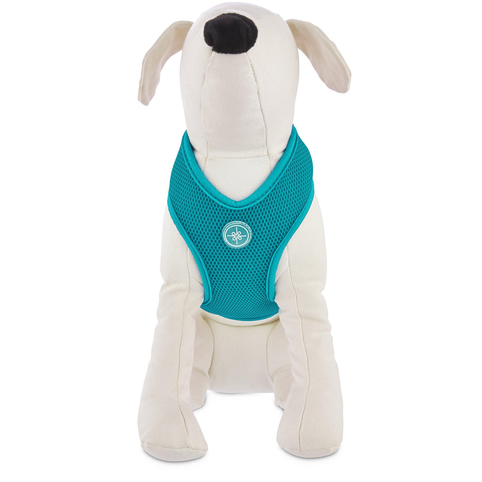 Good2Go Teal Mesh Dog Harness | Petco at Petco in Braselton, GA | Tuggl