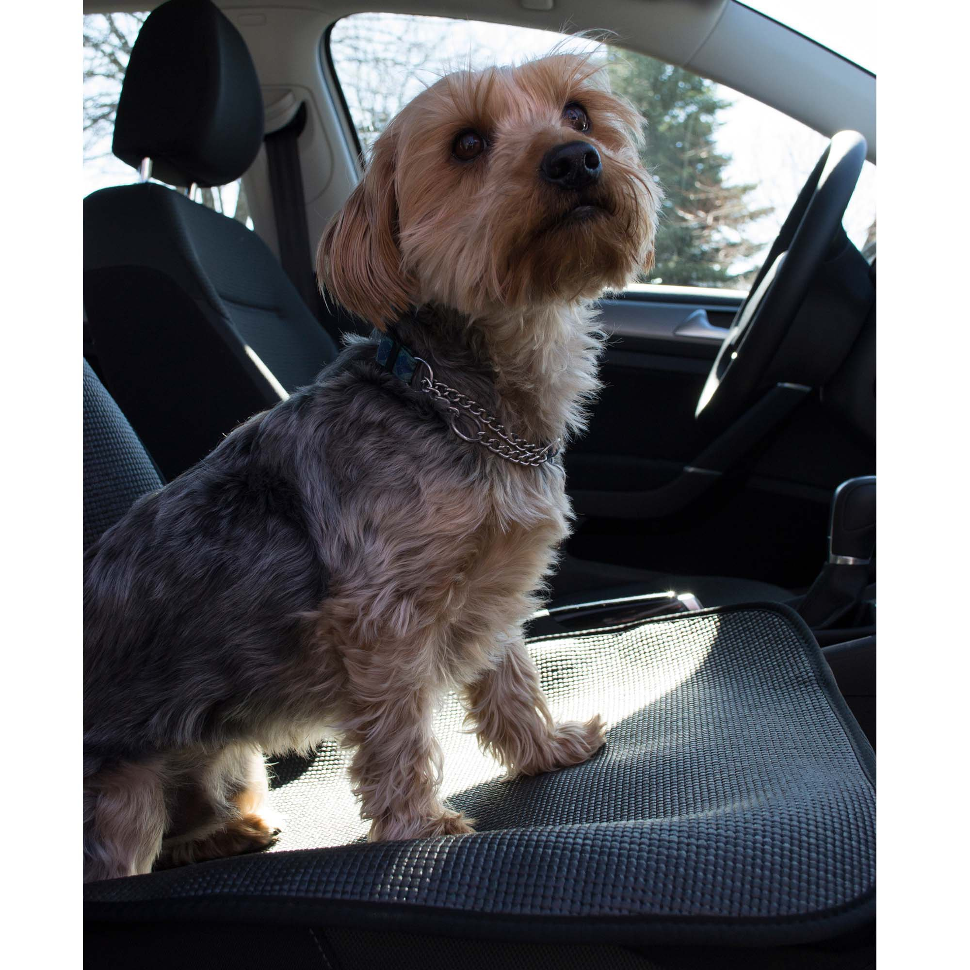 Stayjax Pet Products Bucket Seat Bottom Car Seat Cover Petco