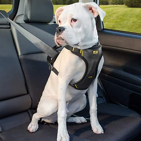 Pet Seat Belt >> Kurgo Impact Seatbelt Automotive Harness Large