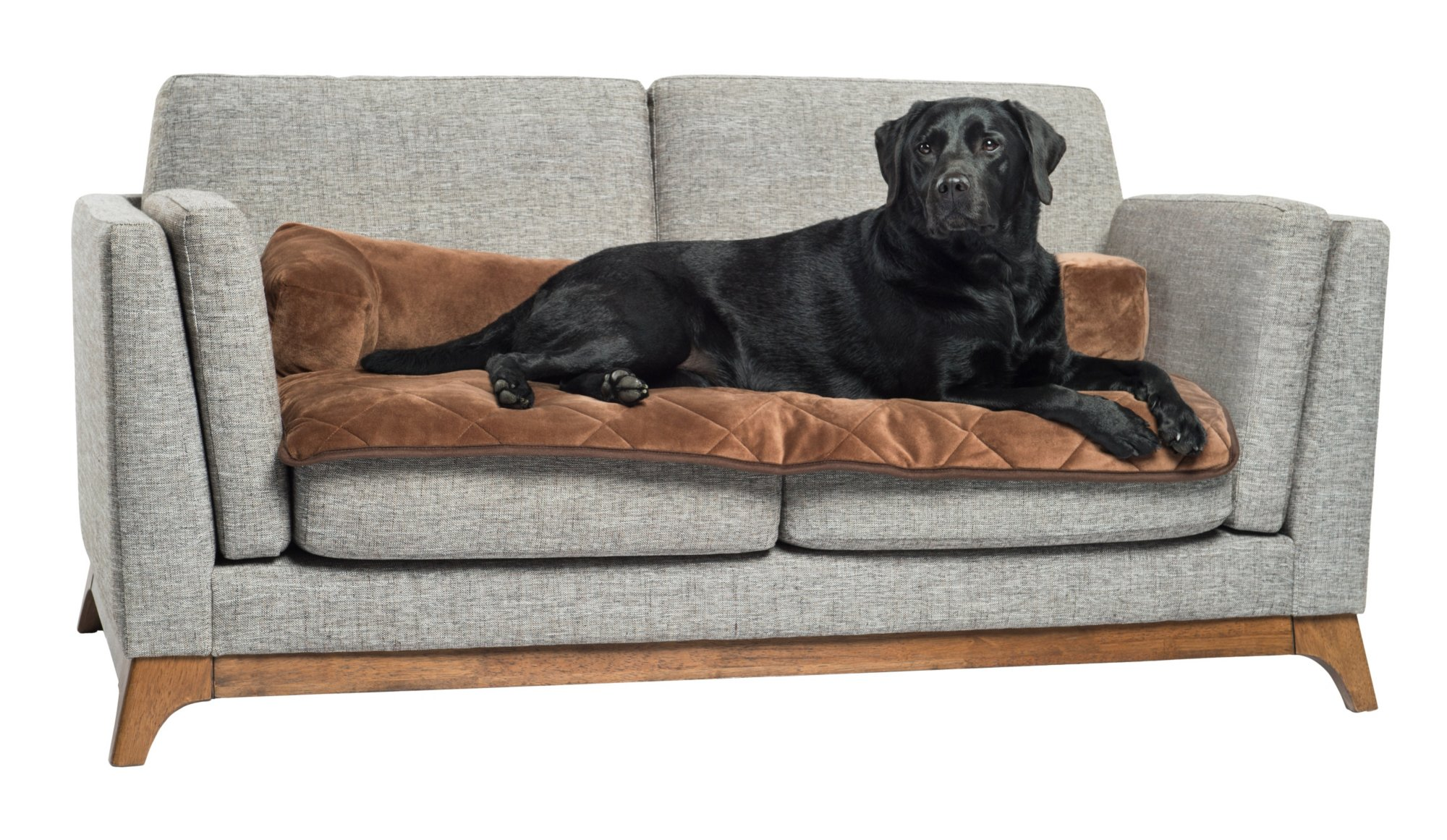 Pet Therapeutics TheraWarm Self Warming Sofa Bolster and Furniture