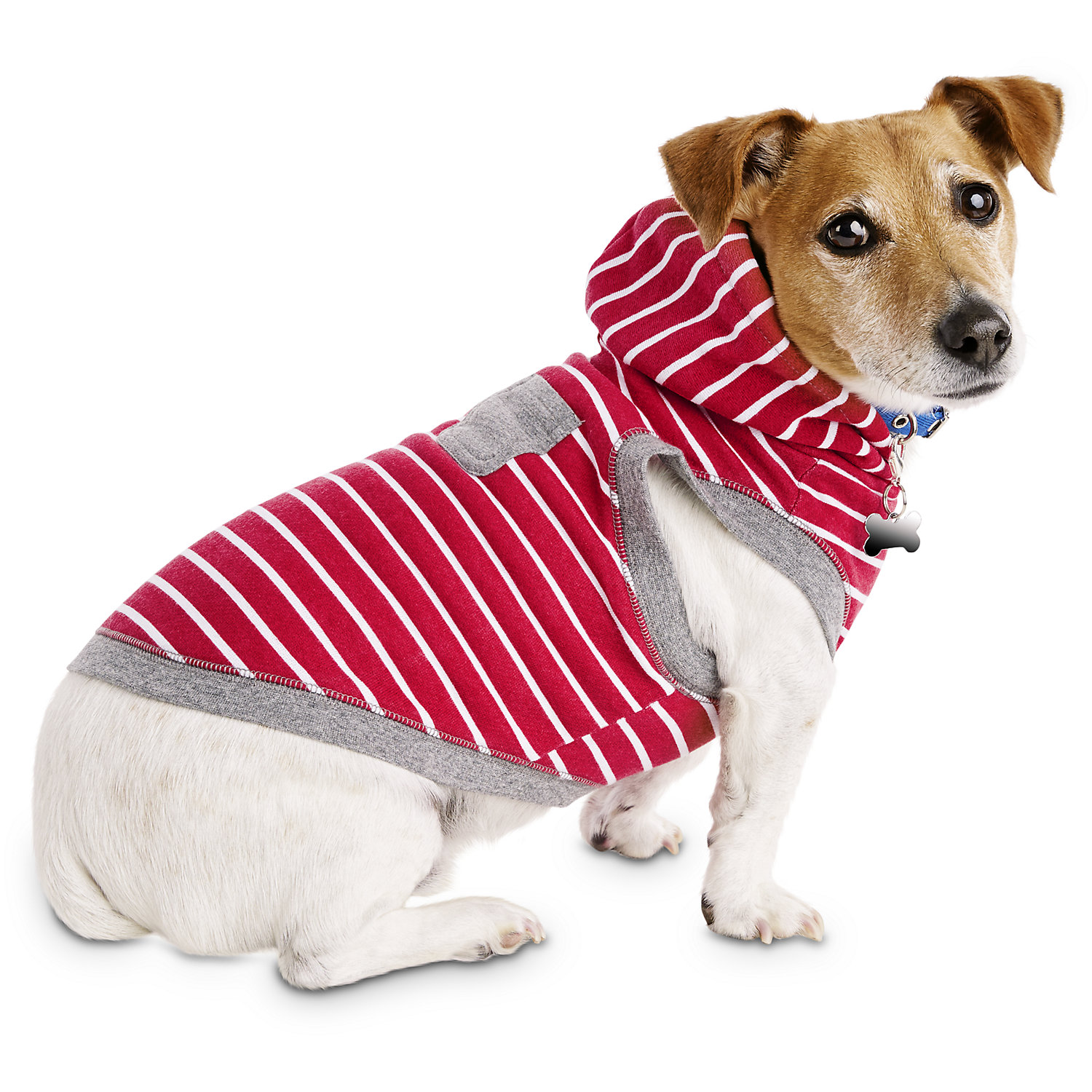 Bond & Co. Red Striped Dog Hoodie, Small