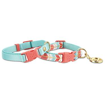 Bond & Co. 2 Pack Turquoise & Coral Collars for Small Dogs