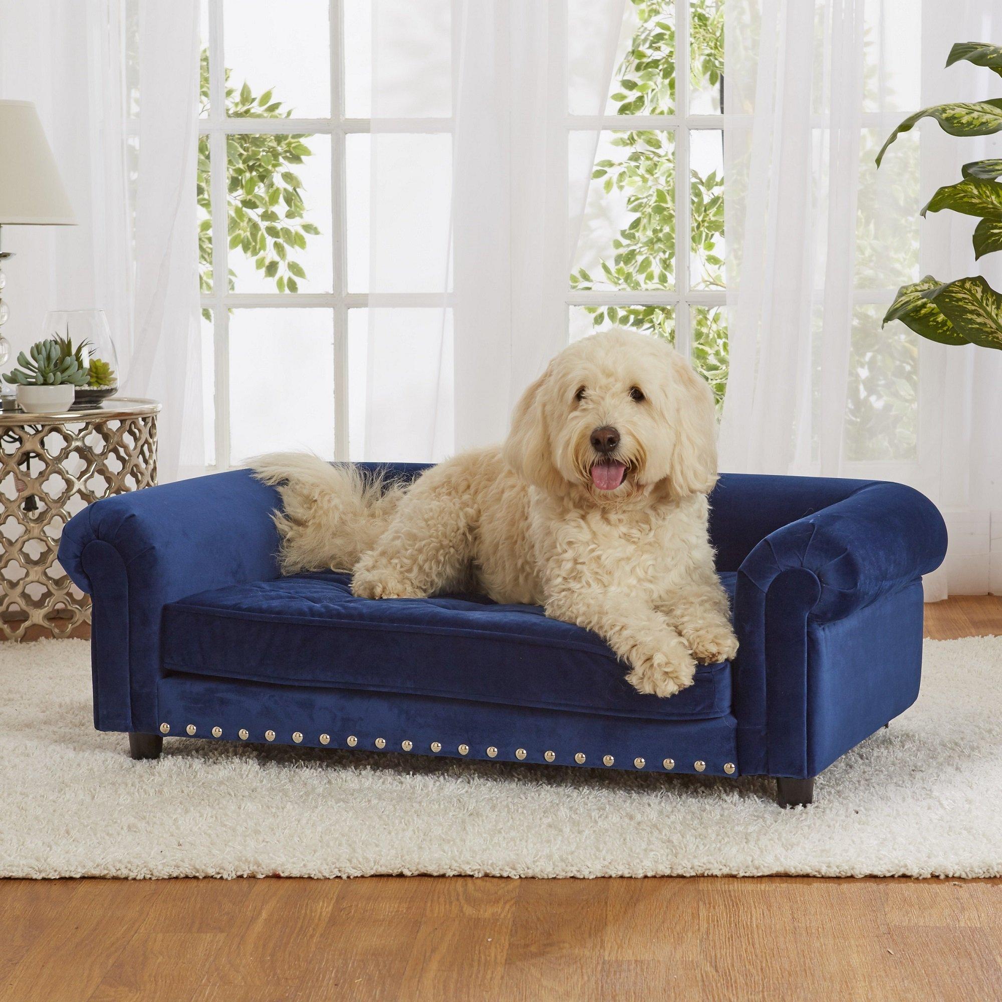 Enchanted Home Pet Blue Velvet Manchester Pet Sofa Petco