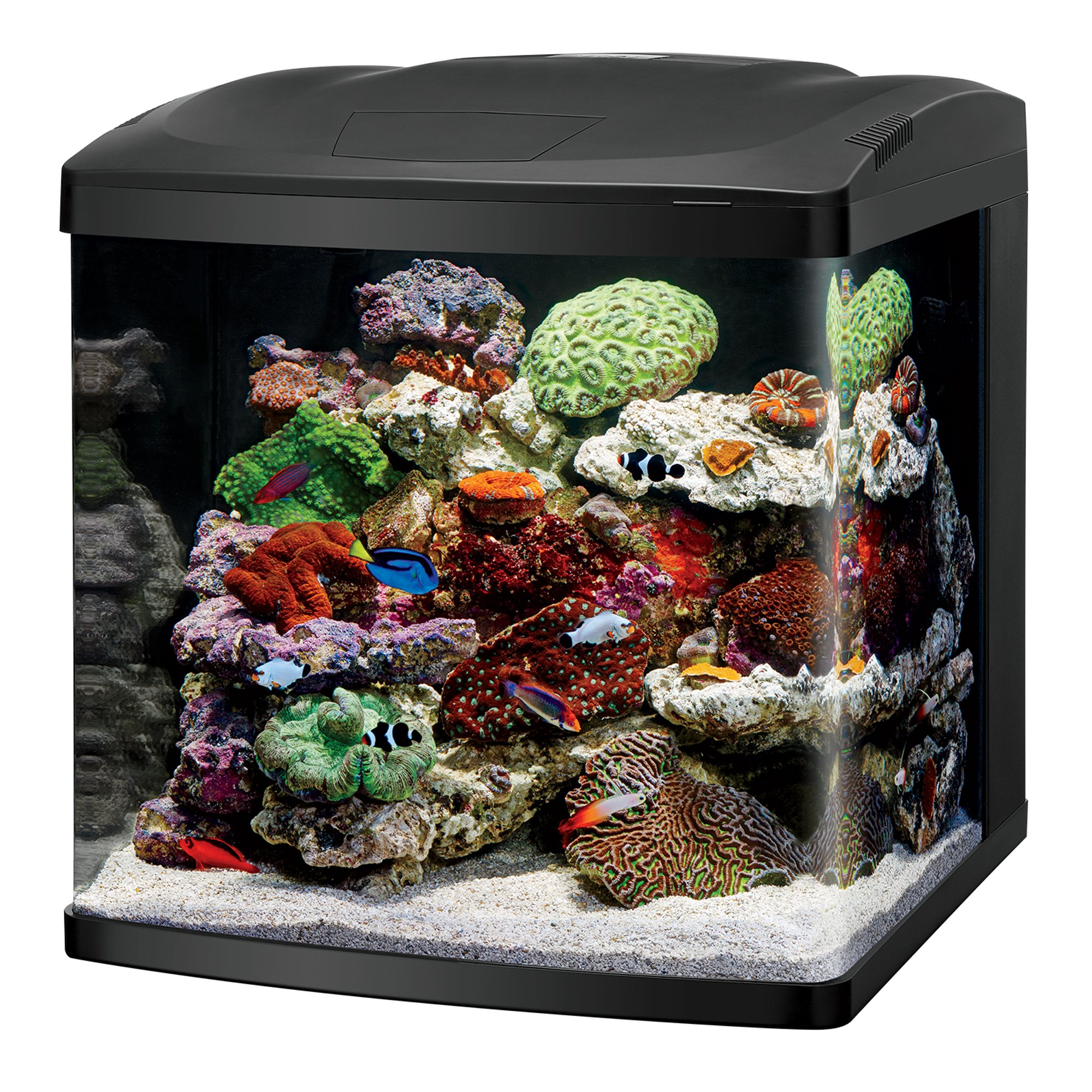 Coralife led biocube aquarium led petco for Marine fish tanks