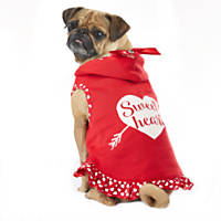 Wag-A-Tude Valentine's Day Red Sweetheart Ruffled Hoodie