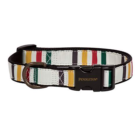 Pendleton Glacier National Park Hiker Dog Collar