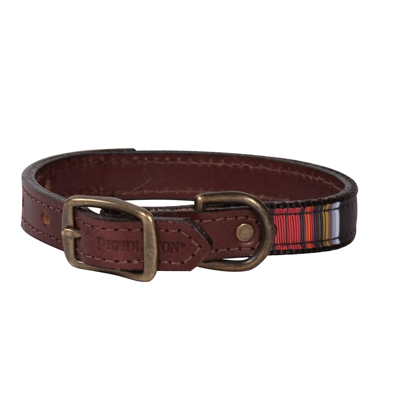 Pendleton Acadia National Park Explorer Dog Collar Medium