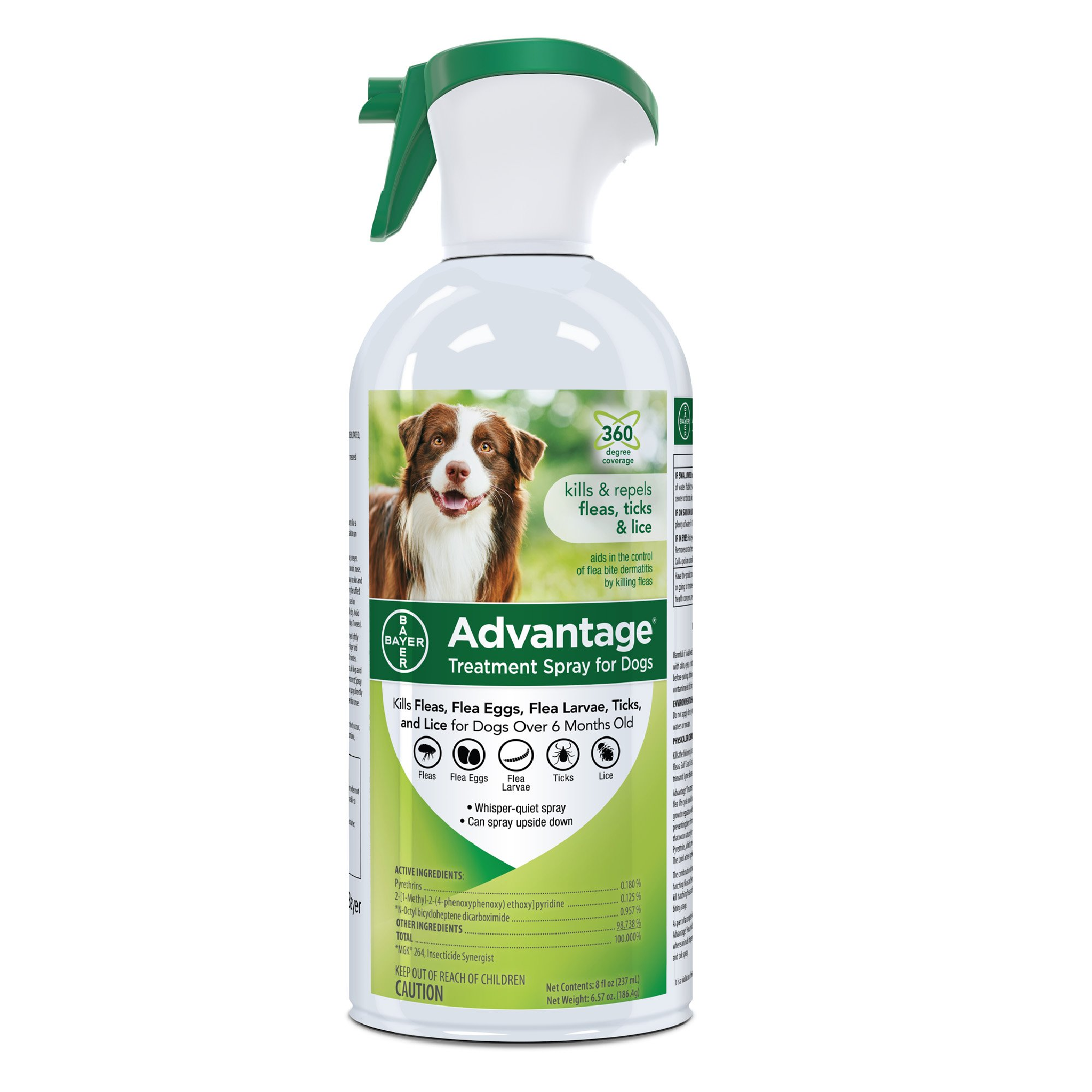 Flea Spray For Dog Kennels