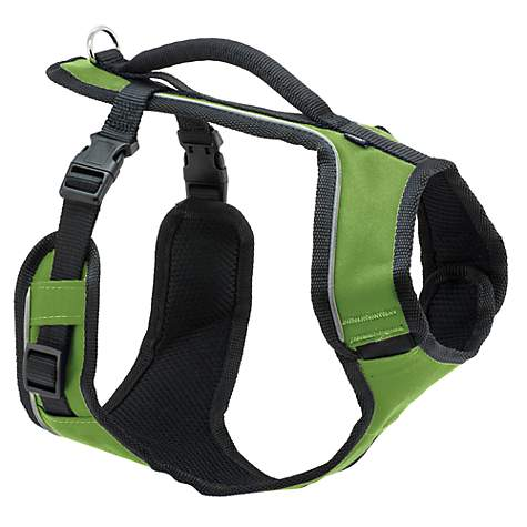 Petsafe EasySport Harness in Apple