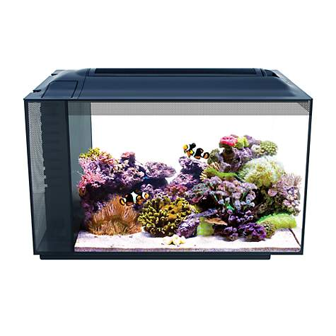 fluval 13 5 gallon evo xii marine aquarium kit petco