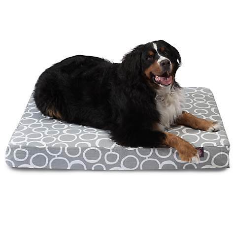 Majestic Pet Gray Fusion Orthopedic Memory Foam Rectangle Dog Bed