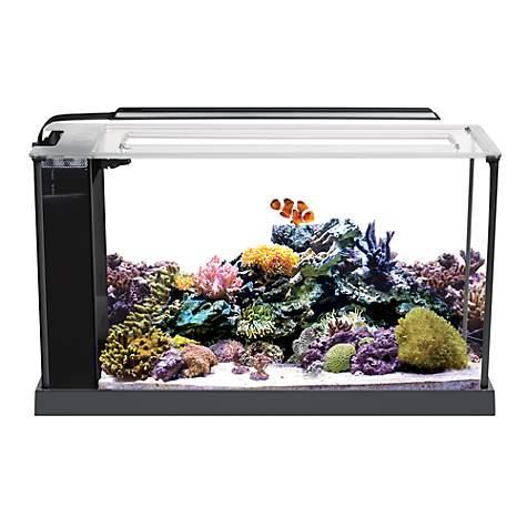 Fluval evo v marine aquarium kit petco for Petco fish tank decor