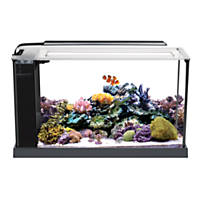 Fish bowls desktop aquariums fish tanks petco for 55 gallon fish tank petco