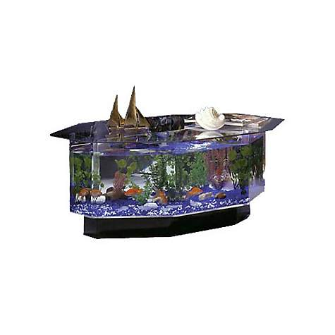 Midwest Tropical AquaTable Aquarium Octagon